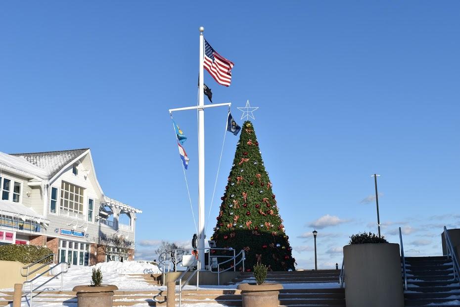 Bethany Beach Christmas tree